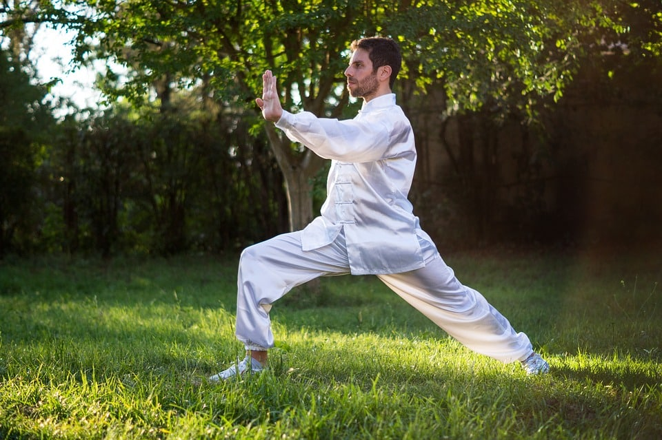 learn tai chi lessons online