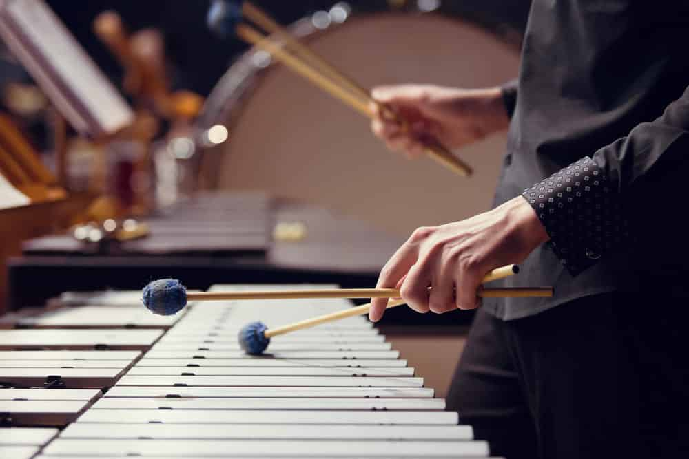 learn xylophone lessons online