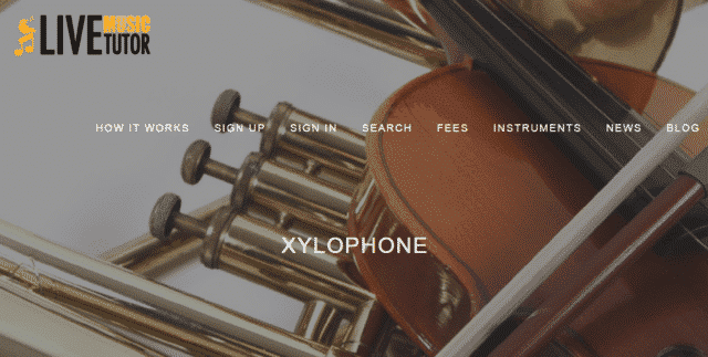 livemusictutor learn xylophone lessons online