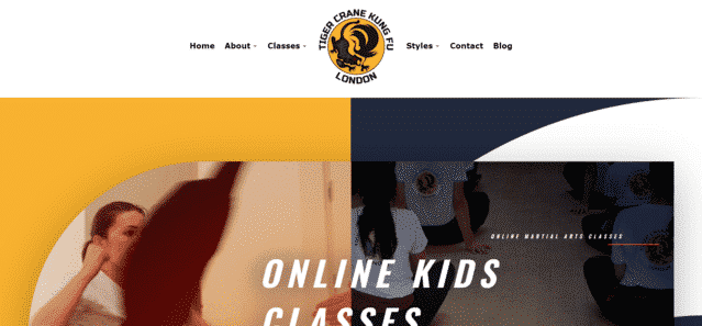 tigercranekungfu learn martial arts lessons online