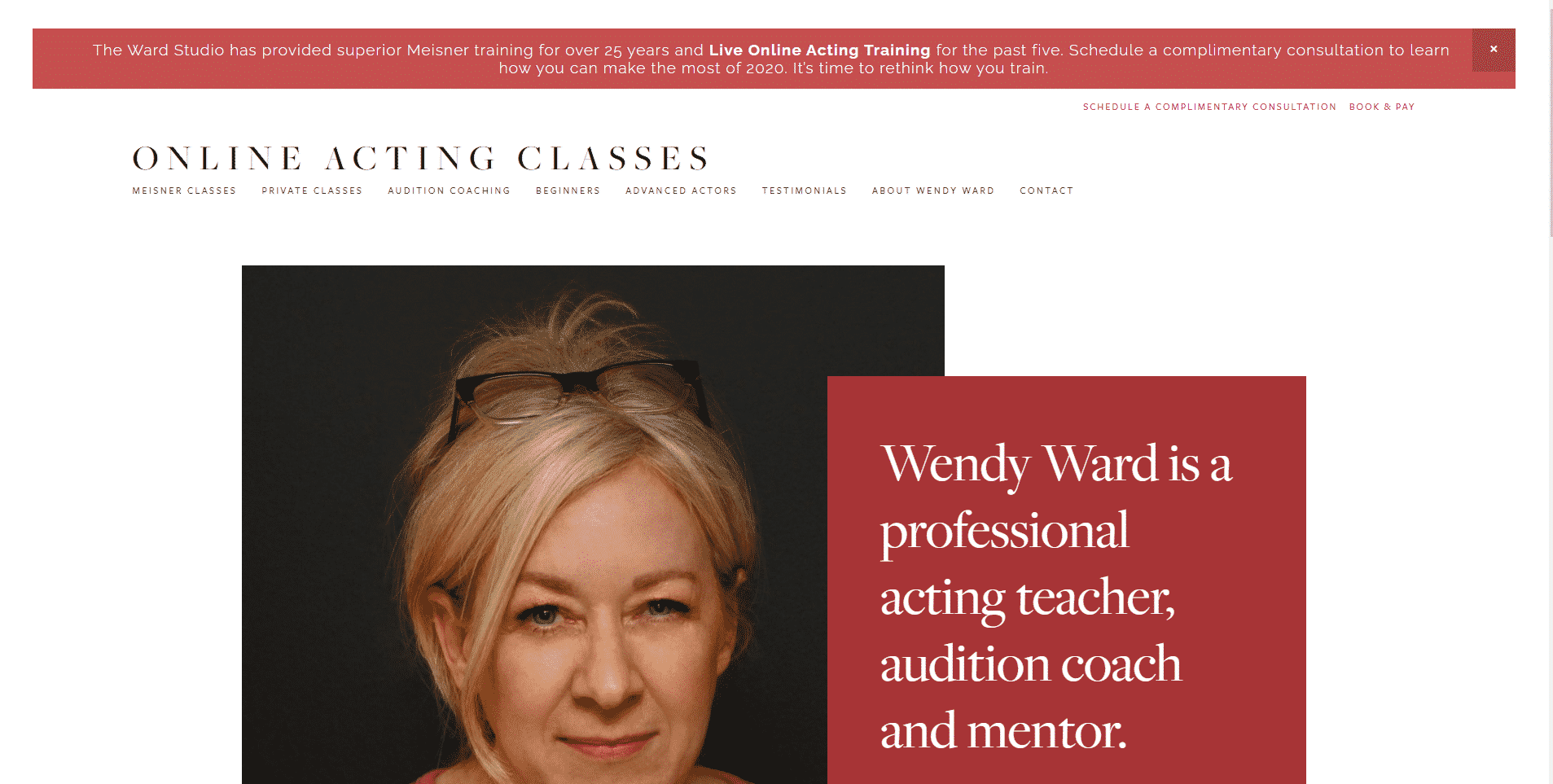 OnlineActingClasses.com Acting Lessons for Beginners
