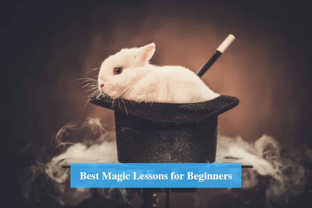 Magic Lessons for Beginners