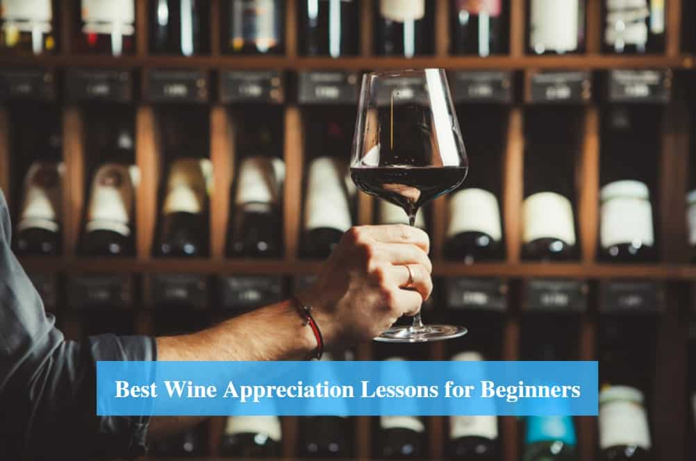Wine Appreciation Lessons for Beginners