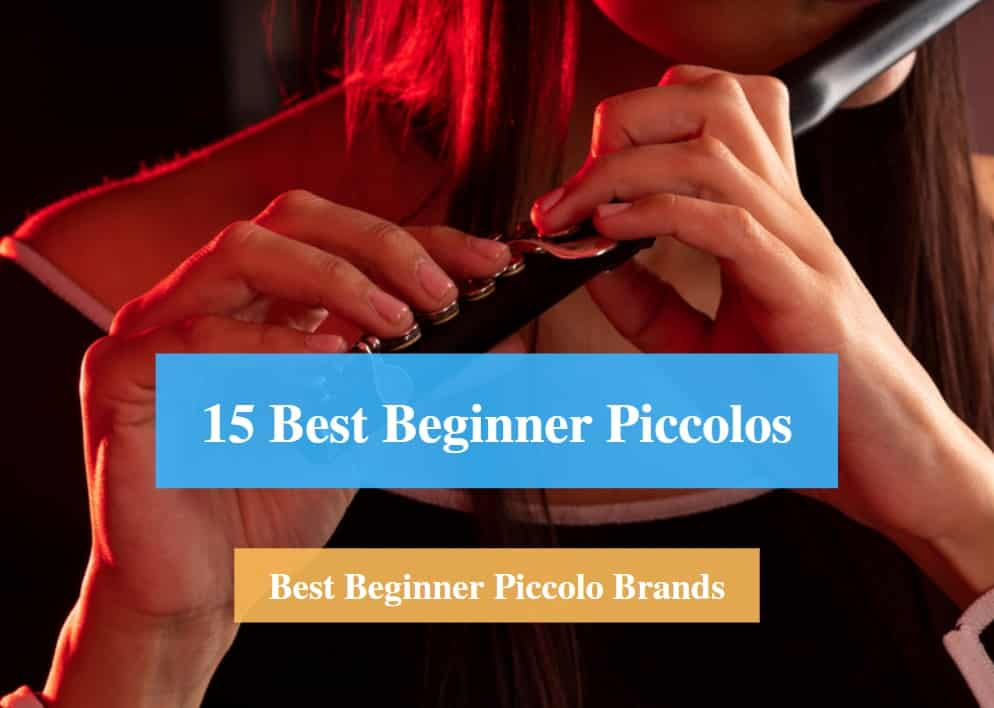 Best Beginner Piccolo