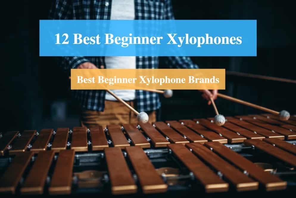 Best Beginner Xylophone