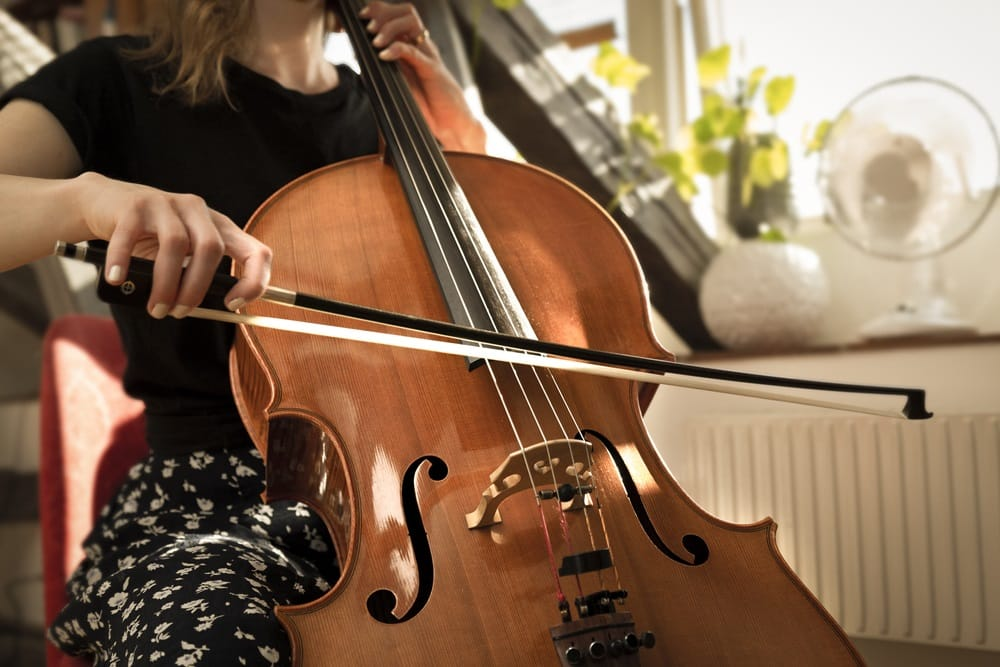 How Much Do Cello Lessons Cost