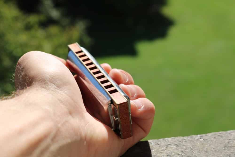How Much Do Harmonica Lessons Cost
