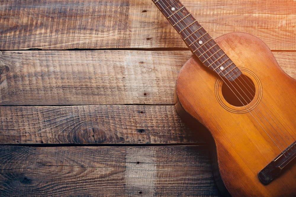 are breedlove guitars good