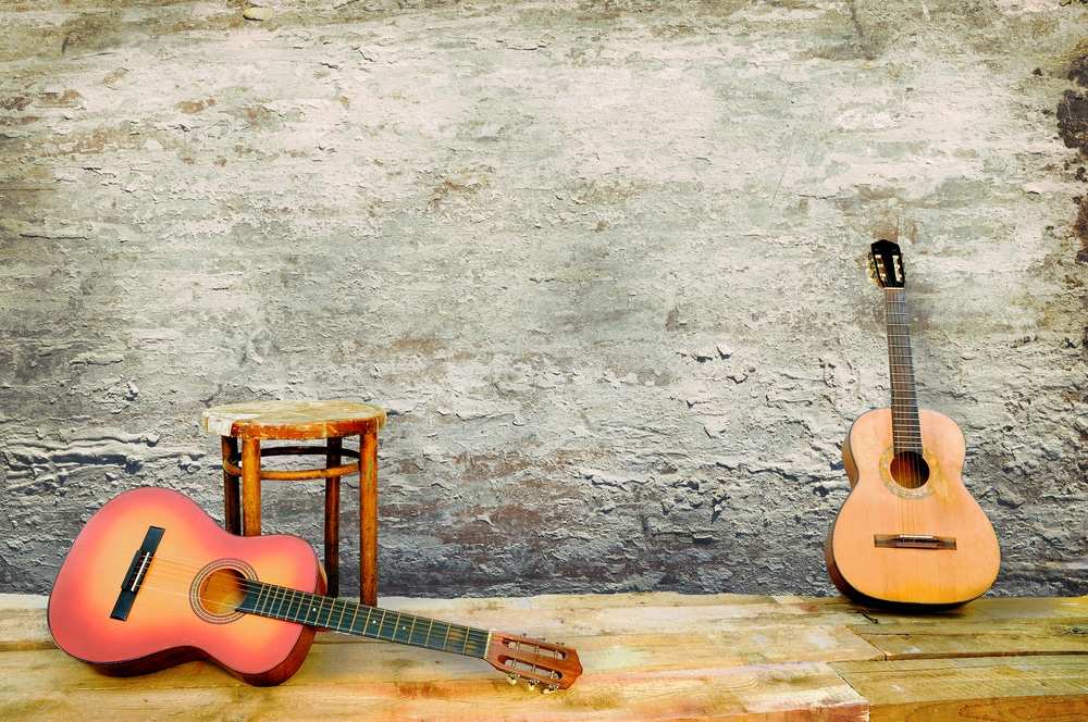 breedlove vs martin guitar