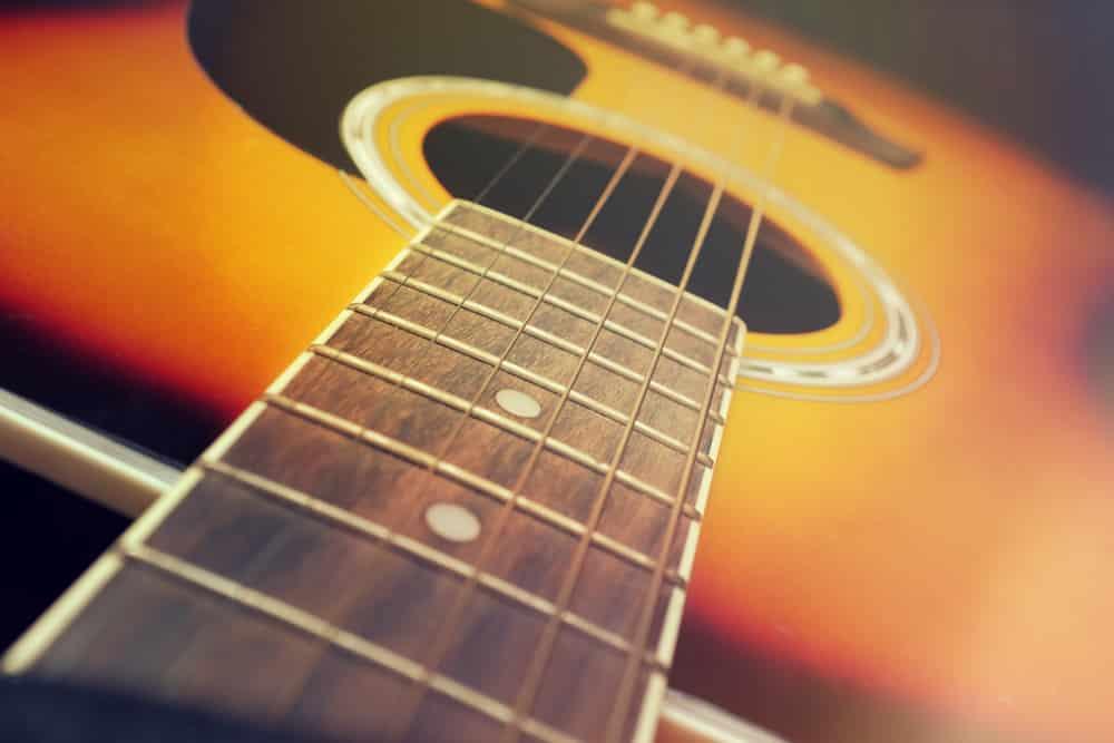 Lark Guitar Review