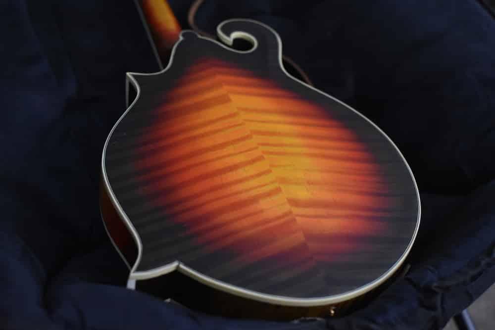 Round Back Guitar Vs Flat