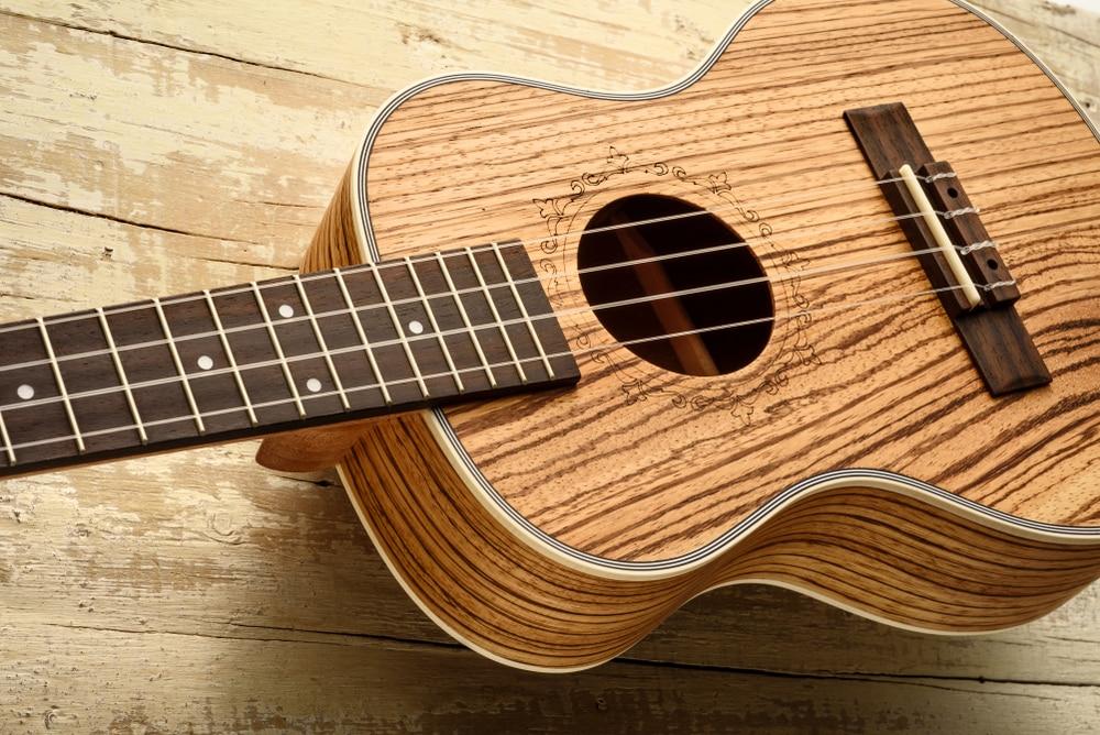 zebrawood guitar